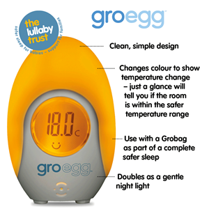 Εικόνα της Gro Θερμόμετρο Δωματίου Gro Egg