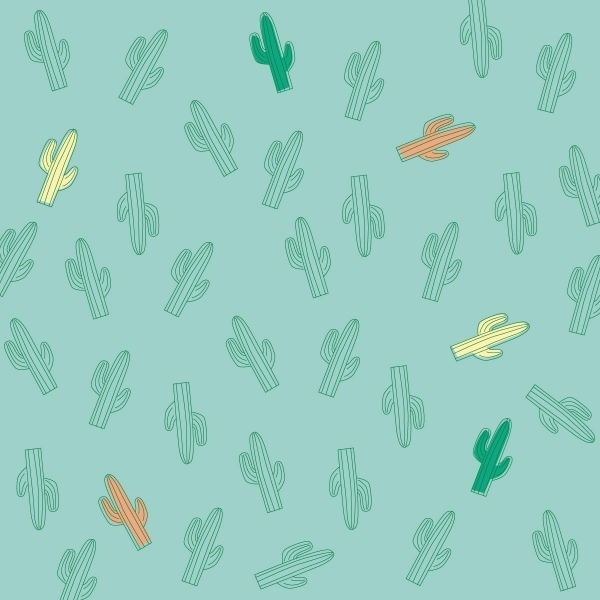 Picture of KiETLa Καπέλo 2 όψεων με UV προστασία Desert Cactus