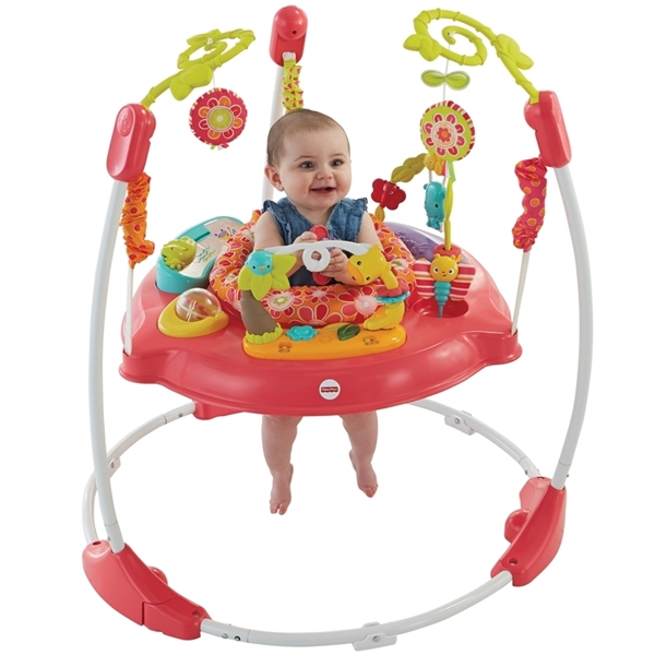 Picture of Fisher Price Jumperoo Pink Petals #DJC81