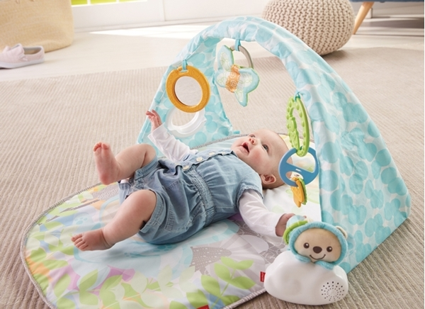 Picture of Fisher Price Μουσικό Γυμναστήριο Butterfly Dreams