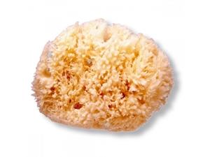 Picture of Suavinex Φυσικό Σφουγγάρι Θαλάσσης - 100% Φυσικό