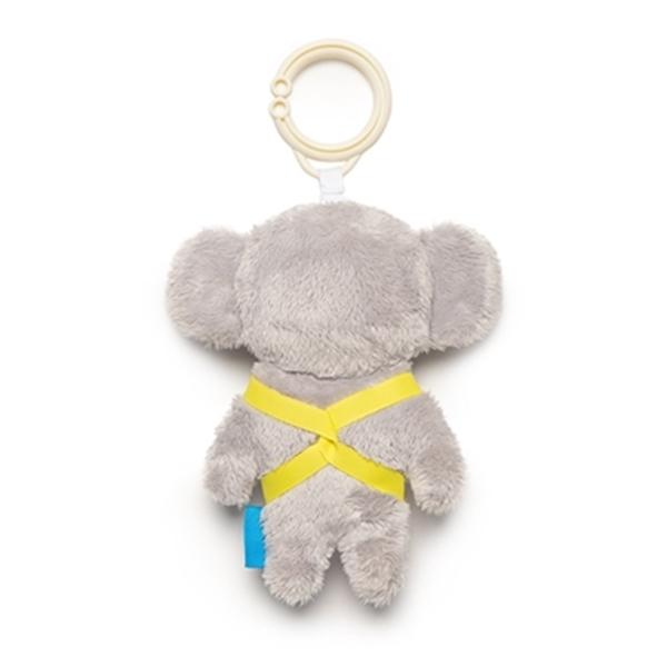 Kimmy the koala
