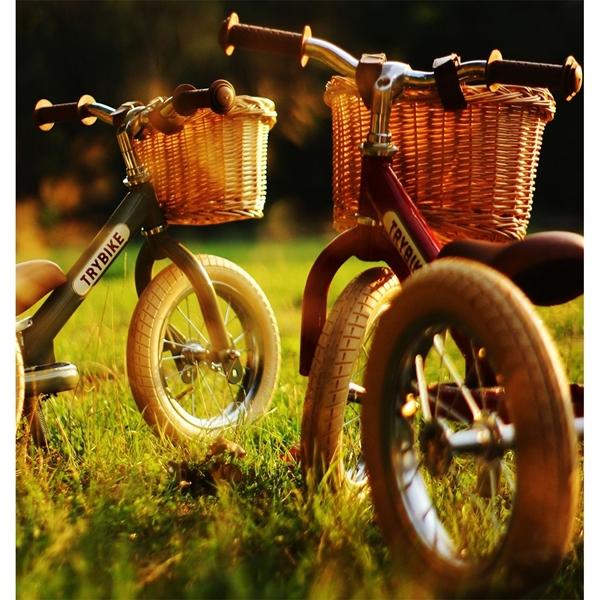 Trybike Καλάθι Ποδηλάτου