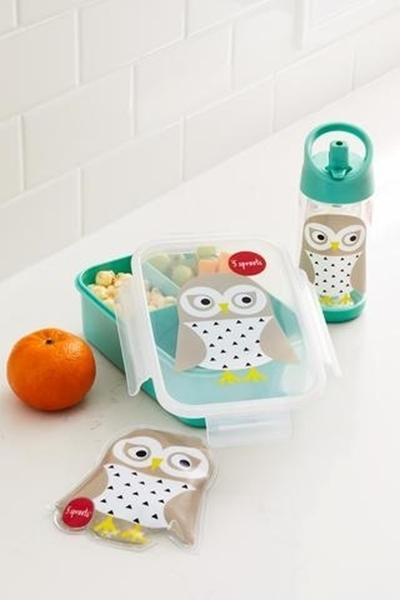 3 sprouts παγούρι, Owl