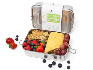 Ecozoi XLarge Lunch Box