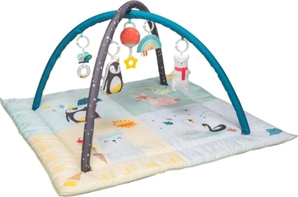 Taf Toys Γυμναστήριο North Pole 4 Seasons Gym